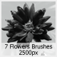 7 Flowers Brushes (2500px) - GraphicRiver Item for Sale