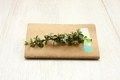 Notebook with branch - PhotoDune Item for Sale