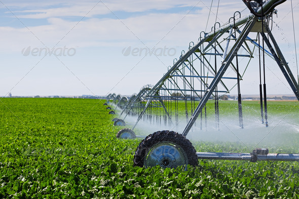PhotoDune Irrigation Pivot 482617