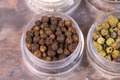 Brown Peppercorns in Container - PhotoDune Item for Sale