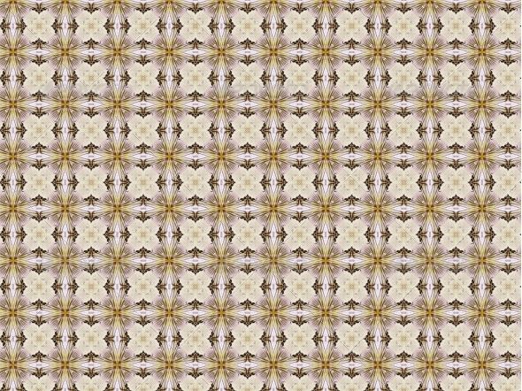 GraphicRiver Vintage Background with Classy Patterns 4618794