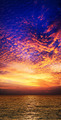 Sunset - PhotoDune Item for Sale
