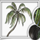 Animated Palm - 3DOcean Item for Sale