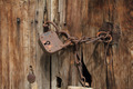 Old rusty padlock with chain on wooden door - PhotoDune Item for Sale
