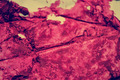 Expression Artistic Grunge Background_6 - PhotoDune Item for Sale