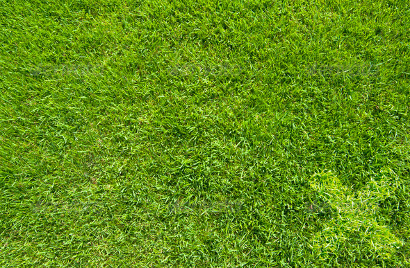 Wrong icon on green grass texture and background - Stock Photo - Images