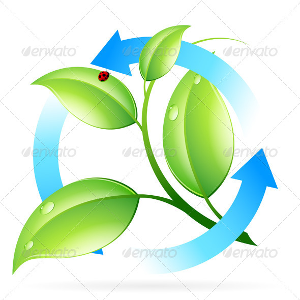 Fresh Green Leaves Icon - Organic objects Objects