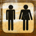 Toilet Sign on wood - PhotoDune Item for Sale