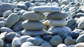 pebble bridge - PhotoDune Item for Sale