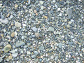 pebble background - PhotoDune Item for Sale