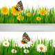 Two Banners with Butterflies and Flowers - GraphicRiver Item for Sale