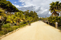 Promenade on Costa del Sol in Marbella - PhotoDune Item for Sale