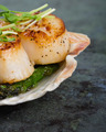 Sauteed scallops on the shell with asparagus - PhotoDune Item for Sale