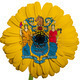 gerbera daisy flower in colors flag of american state of new jer - PhotoDune Item for Sale