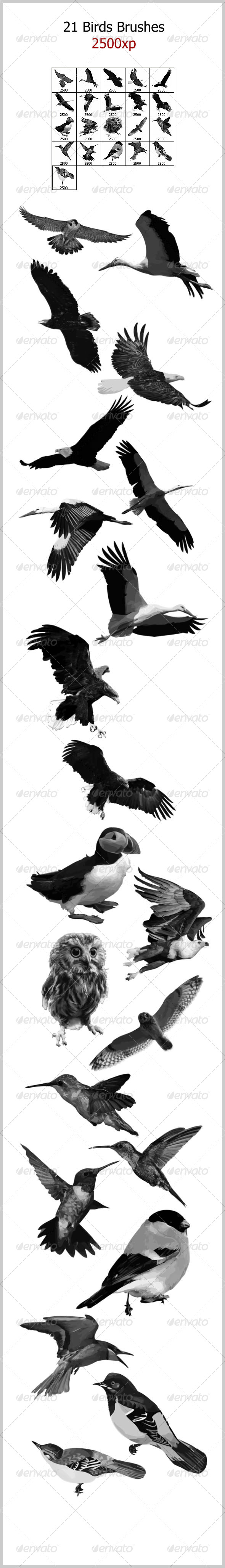 GraphicRiver 21 Birds Brushes 2500px 4662303