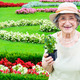 Happy senior woman holding flowers in garden - PhotoDune Item for Sale