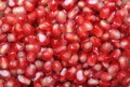 Background pomegranate seeds - PhotoDune Item for Sale