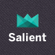 Salient - Responsive Portfolio & Blog Theme