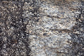 Stone Texture - PhotoDune Item for Sale