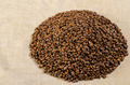 Coffee beans on linen fabric - PhotoDune Item for Sale