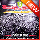 Summer Music Festival Flyer - GraphicRiver Item for Sale