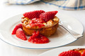 Baked Ricotta Dessert with Strawberries - PhotoDune Item for Sale