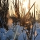 Winter Sunset 3 - VideoHive Item for Sale