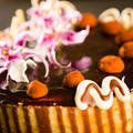 Richly decorated cake with chocolate coating - PhotoDune Item for Sale