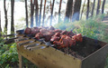 shish kebab barbecue on  nature. - PhotoDune Item for Sale
