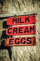 Dairy Sign - PhotoDune Item for Sale