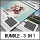 3in1 Corporate Flyer Bundle #1 - GraphicRiver Item for Sale