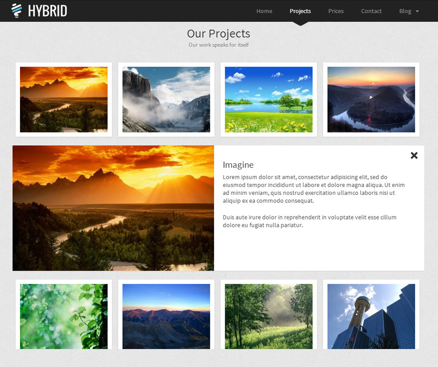 Hybrid Responsive Retina One-Page WordPress Theme!