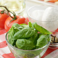 Classic caprese ingredients - PhotoDune Item for Sale