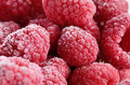 Raspberry frost macro - PhotoDune Item for Sale