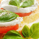 Caprese sandwiches with mozzarella - PhotoDune Item for Sale