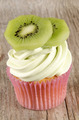 cupcake with kiwi cutter cream - PhotoDune Item for Sale