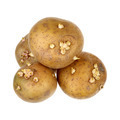 Potatoes with sprouts - PhotoDune Item for Sale