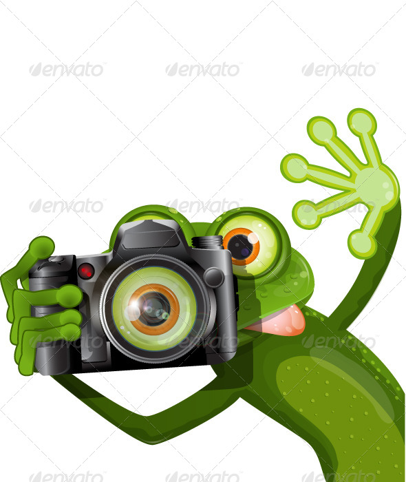 GraphicRiver Frog with a Camera 4715851