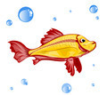 Vector Fish - PhotoDune Item for Sale