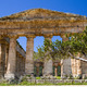 Ancient Greek Temple of Segesta - PhotoDune Item for Sale