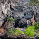 The island of phi phi leh Krabi, Thailand - PhotoDune Item for Sale