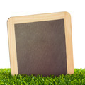 Chalkboard in Grass - PhotoDune Item for Sale