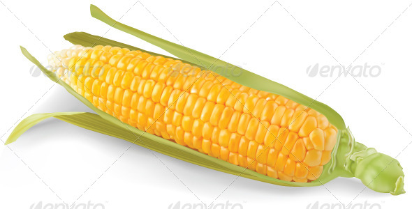 GraphicRiver Corn 4722605