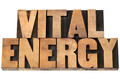 vital energy in wood type - PhotoDune Item for Sale