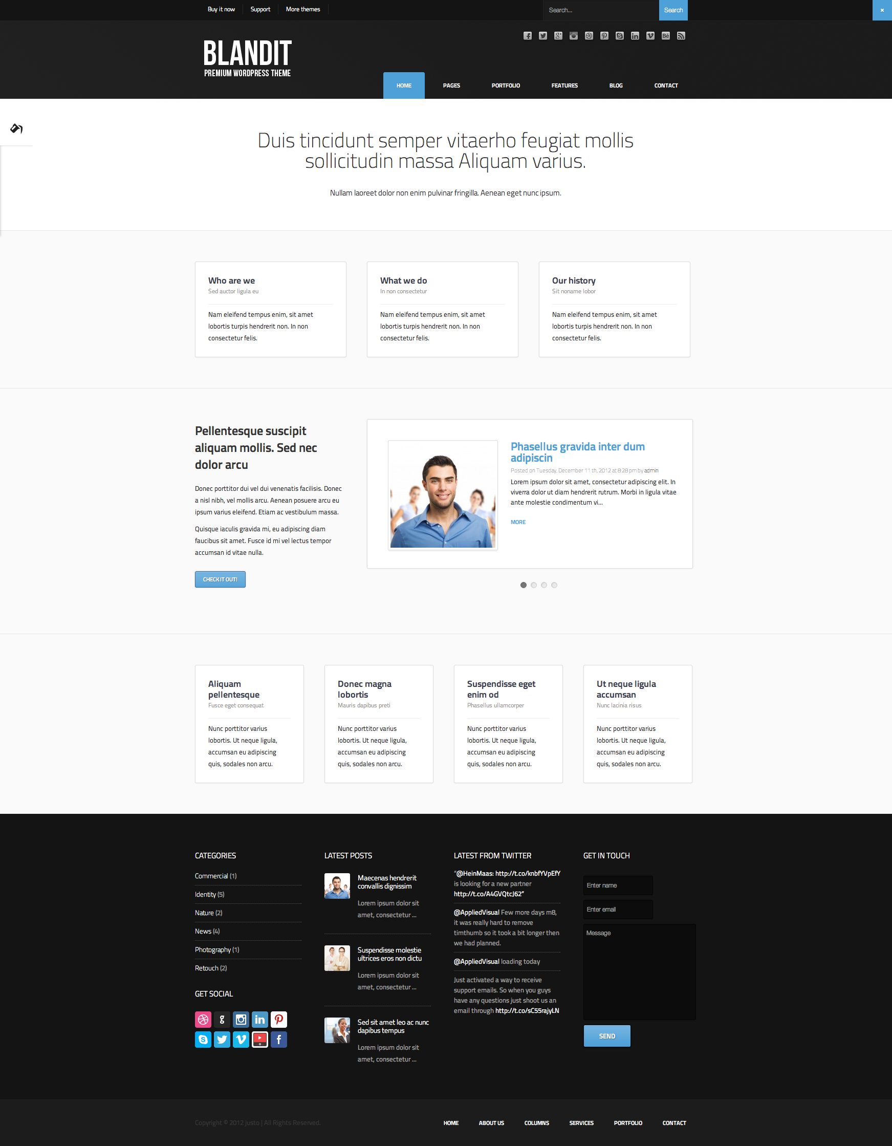 Blandit - WordPress Business Portfolio Theme