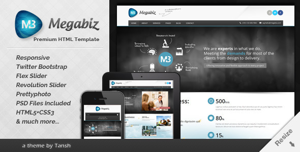 Megabiz Responsive HTML/CSS Template - Business Corporate
