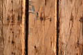 Rough wooden wall - PhotoDune Item for Sale