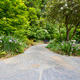 Slate Stone Garden Path with Plants - PhotoDune Item for Sale