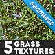5 Seamless Grass Textures - GraphicRiver Item for Sale