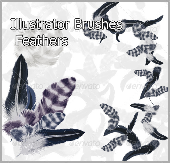 Feathers  Brushes - Brushes Illustrator